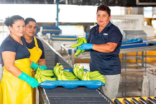 Chiquita gaat de uitdaging aan om vrouwen te emanciperen - 5