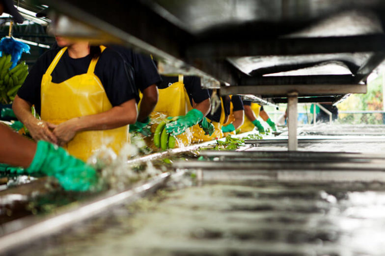 Het beheer van de watervoetafdruk op plantages van Chiquita levert per jaar een besparing van 1,8 miljard liter water op - 2