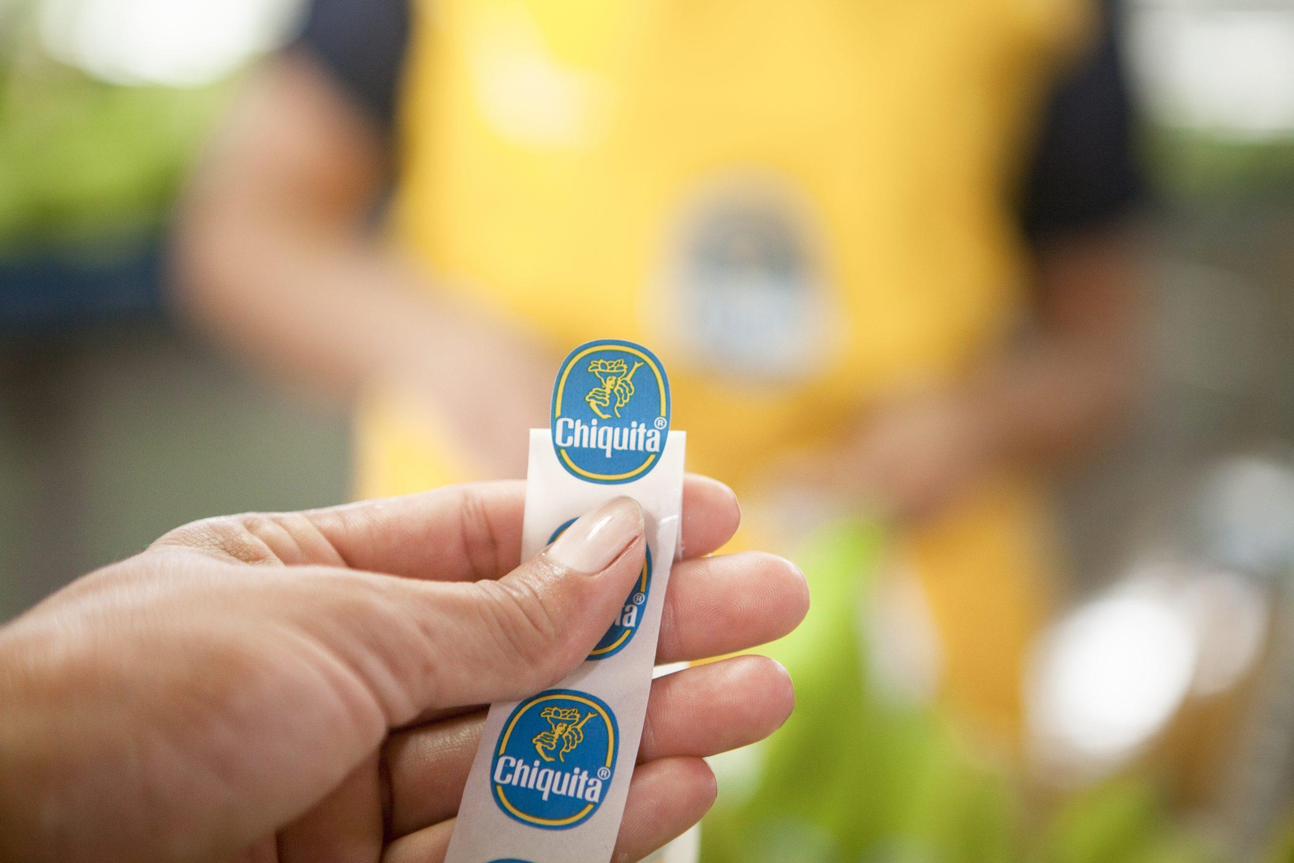 Blue Sticker Chiquita Banana Brand