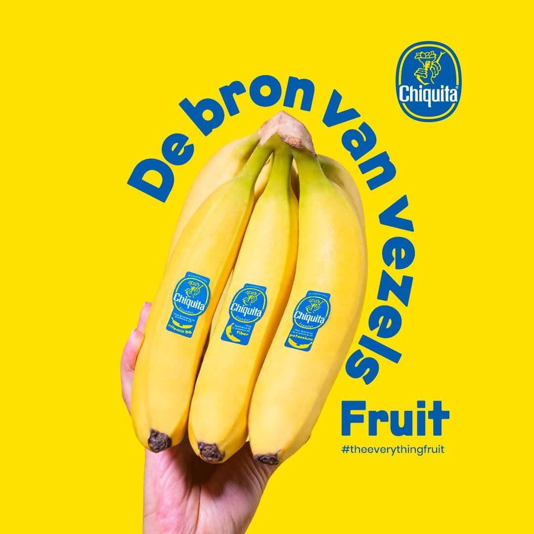 De Bron Van Vezels Fruits