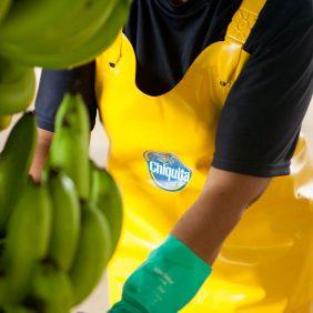 Chiquita en de VN-doelstellingen voor duurzame ontwikkeling: onze toewijding voor een duurzame planeet